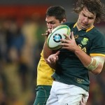 Boks wary of wounded Wallabies