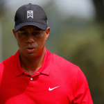 Tiger is hungry again
