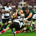 Springboks lose another loose forward to injury