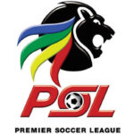 Premier Soccer league (PSL)