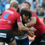 Dillyn Leads – Lions