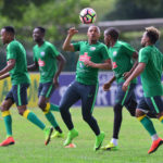 Bafana Bafana during training