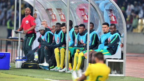 Bafana Bafana must learn from Germany