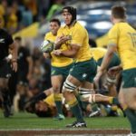 Simmons – Wallabies