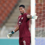 Kaizer Chiefs sign Virgil Vries