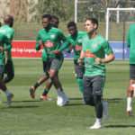Bafana Bafana injured duo Dean Furman and Kamehelo Mokotjo